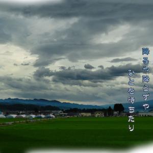 「雨待ち」