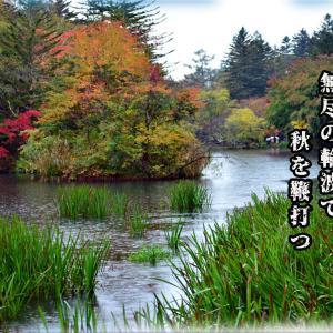 「軽井沢・雲場の池/お水端/御前水」