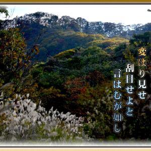 「秋山(しゅうざん)は~」