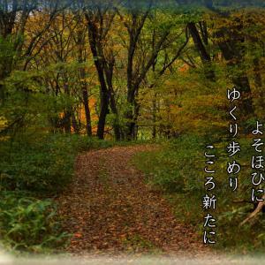 「ご近所徘徊/秋の山」