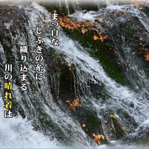 「川の装い」