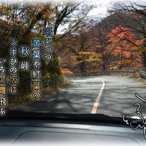 「車で徘徊」