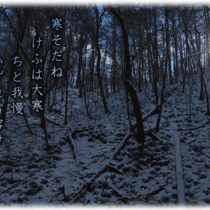 「ご近所徘徊/大寒山」