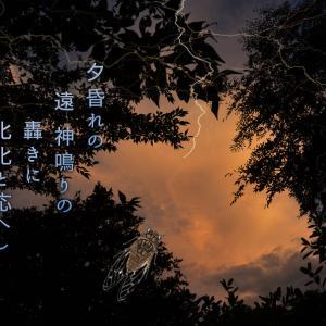 「夏は朝、夕暮れもいいね♪軽井沢」