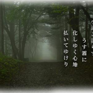 「ご近所徘徊/霧の日」