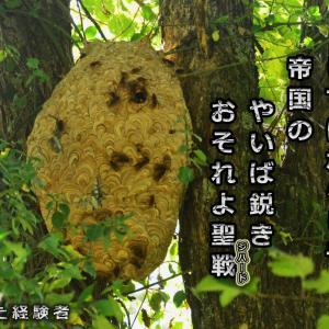 「スズメバチの大きな巣」