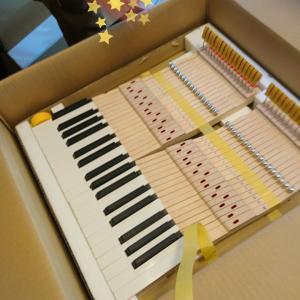 鍵盤ピカピカ