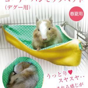 ♥デグーのララちゃんも愛用する 「コーナーハンモックベッド」が発売しました!