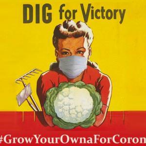 コロナという戦禍におけるスローガン #Digforvictory #勝つために掘れ 都市に暮らす