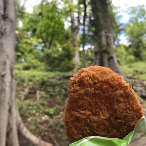 """""""森でコロッケを食べていたら思わぬ客人におどろかされたという昨日の話。"""""""