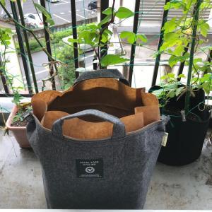 とうとう始めてしまいました。野菜を捨てない生活。たい肥作り。ローカルフードサイクリング  LFC