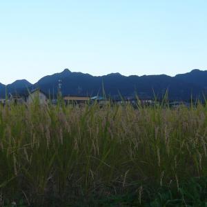 デ・レーケ堰堤クリーン作戦:第十二章 「雷震」編その1