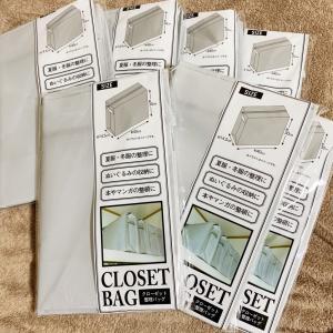 【収納】セリアのクローゼット整理バッグが便利