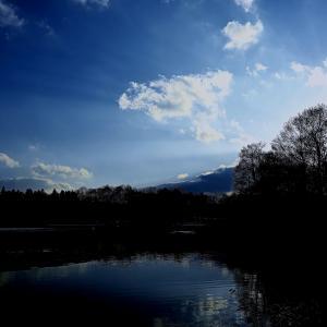 初冬の水辺の風景から      No.7169