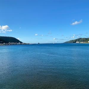 奄美大島は夢の島♪