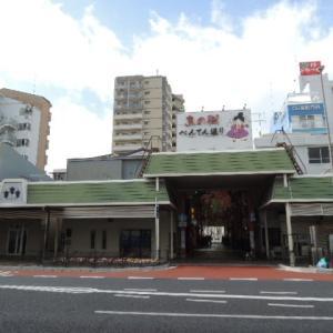 〇2020.2.23 シンポジウム「明石市・神戸市の アカミミガメは減ったのか?」IN 明石市民会館