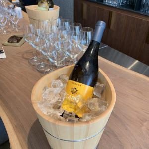 ポルトガル、ドウロ上流の白ワイン