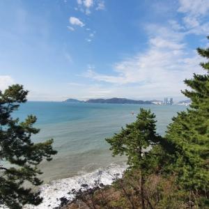 きのこの釜山ライフ カルメッキル1-2区間 海雲台から松亭海水浴場までトレッキング