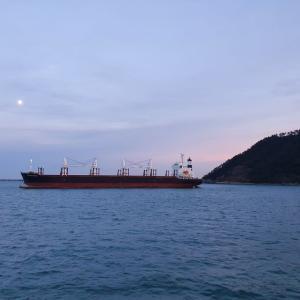 釜山チャガルチクルーズで釜山港ツアー