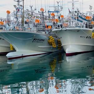 イカ釣り船団の休日