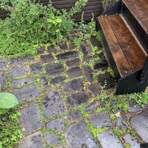 梅雨と相性の良いアプローチとグリーンの効果