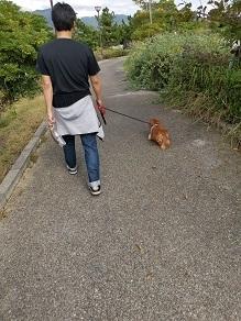 焼津散歩、ときどき前編。