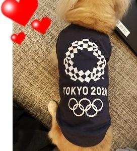 タダ!、ときどきオリンピックちゃん。