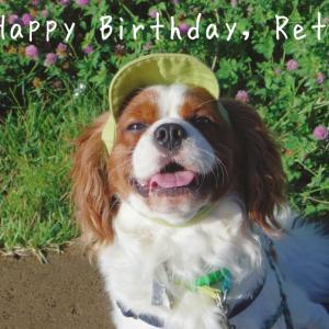 Dogs*今日はレトの誕生日でした!
