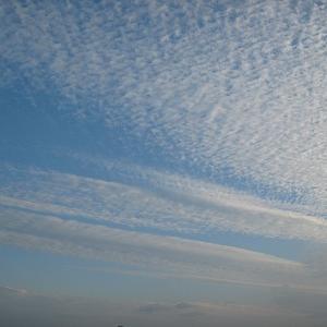 空を見上げれば・・・秋