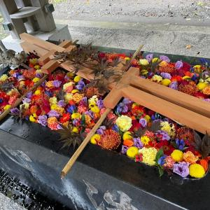 秋も綺麗ですね 帯廣神社にて