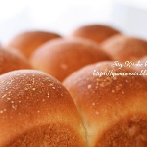 YouTubeでライブ配信とちぎりパン