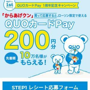 からあげくんを買って200円pay貰おう