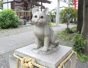 迷い猫が帰ってくる…「猫返し神社」の不思議な御利益