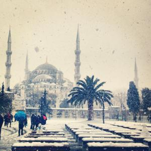 DIODBA from ISTANBUL