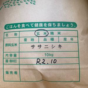 美味しいお米で療養中