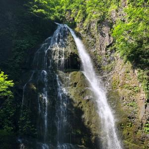 ある日の水遊び 〜温海川 四の滝〜