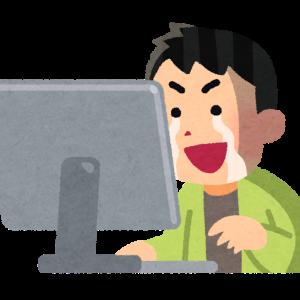 彡(゚)(゚)「ワイはネットの未来を守るために戦うで!」