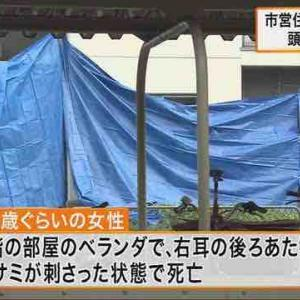 頭にハサミ刺さった女性遺体、死因は熱中症