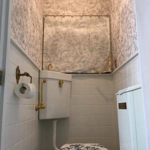 トイレの改装 3 窓辺のインテリア