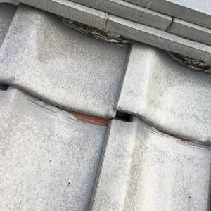 屋根瓦がずれてました