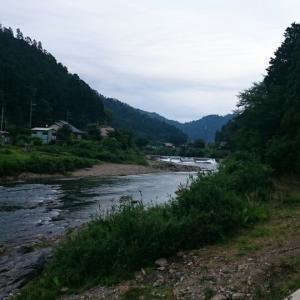 今日の上桂川