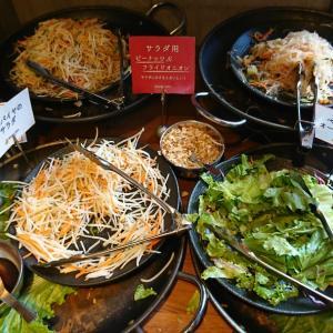 新宿ベトナム惣菜食べ放題ランチ