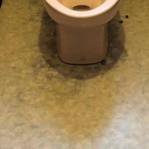 トイレの内装を新しくしたい