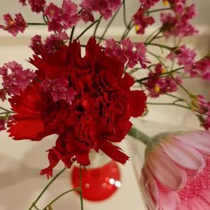 花鳥風月~今週のお花
