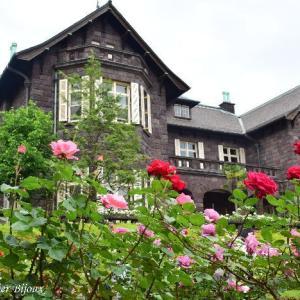 旧古河庭園のバラ&洋館