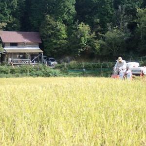 里山ひよじ村の稲刈りに参加してきた191012