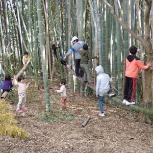 今期最後の焚き火遊び200329