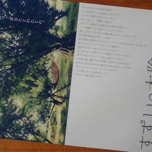 102『すずしい木陰』2020横川シネマにて43