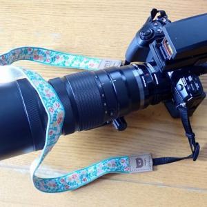 オリンパスの2倍テレコンバーターと望遠レンズ用のドットサイト照準器を購入