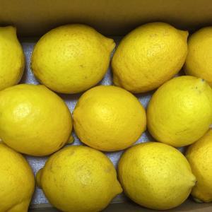 レモンを手に入れたならレモネードを作れ!